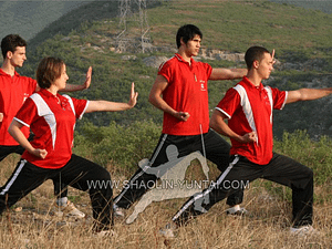 Tai Chi Training in the Mountains