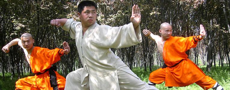 Apprenez les arts martiaux auprès de nos maîtres authentiques