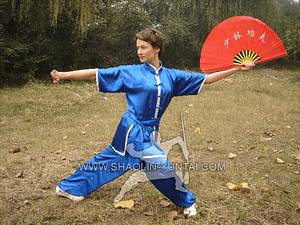 Tai Chi Fan Training