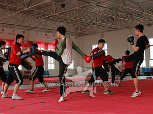 Sanda group training in China