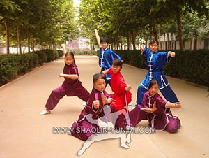 Teenager Wushu Training