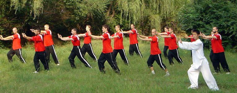 High Quality Tai Chi Training - Get rid of stress and build a strong body in a healthy way.
