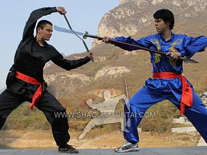 Wushu Dublin Training China