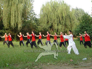 aiChi in the pure nature is the best. Master Hai Yang starting the Tai Ji form Lao Jia Yi Lu….pure energy!