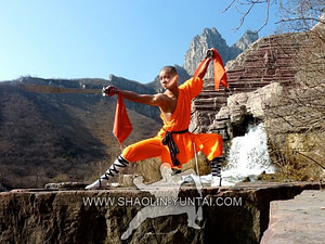 Master Dong Xie with double Swords in front of the nearby waterfalls.