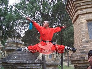 Pagoda Forest Shaolin Temple