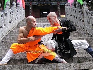 Dominic Carrilho and Mike training in front of the famous Shaolin Temple