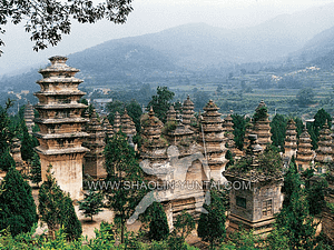 Pagoda Forest of the Shaolin Temple